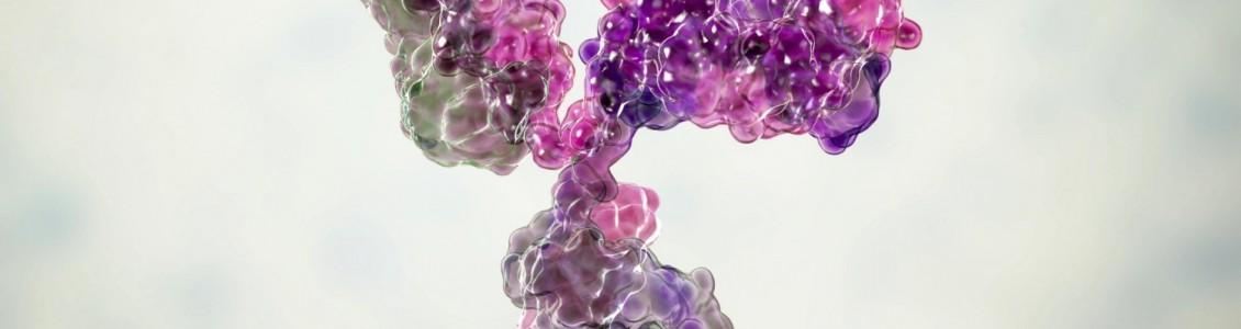COVID-19 Tests Targeting N Protein