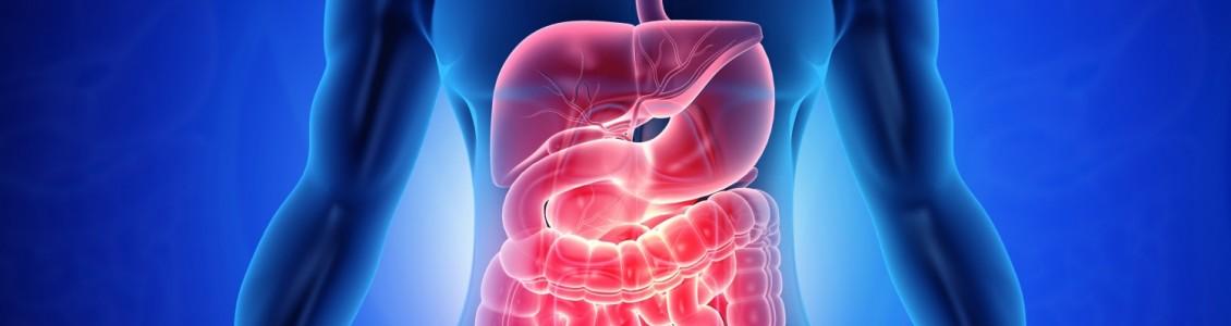 Gastrointestinal Pathogen Panel (GPP)