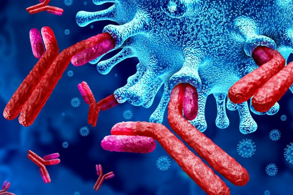 COVID-19 Neutralization Antibody Test